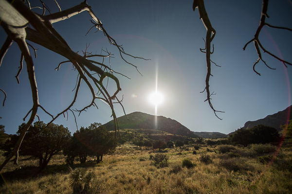 guadalupe_mountains-1
