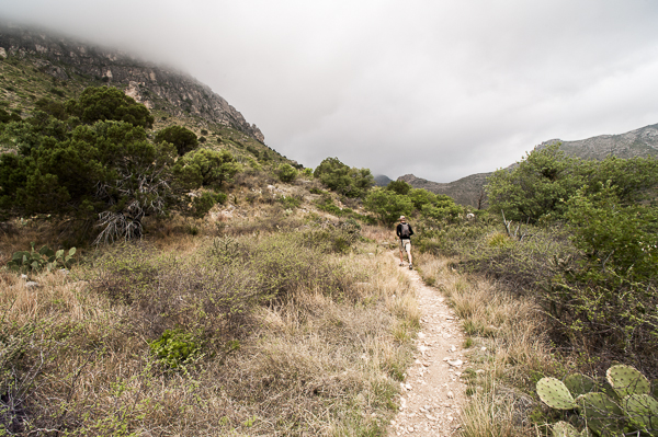 guadalupe_mountains-4
