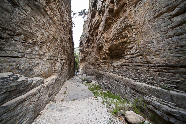 guadalupe_mountains-7
