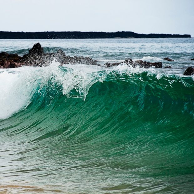 maui-wave