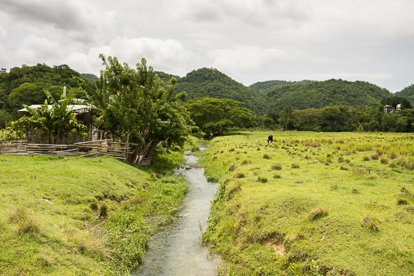 jamaica-6921