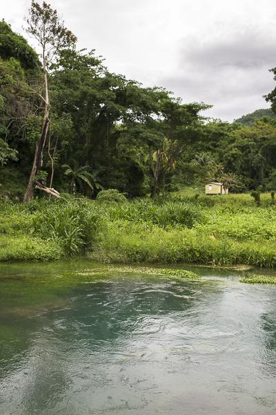 jamaica-6956