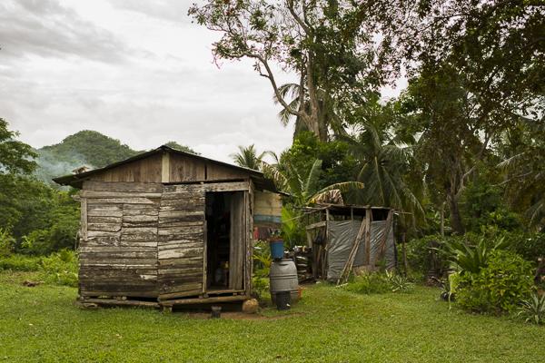 jamaica-6965