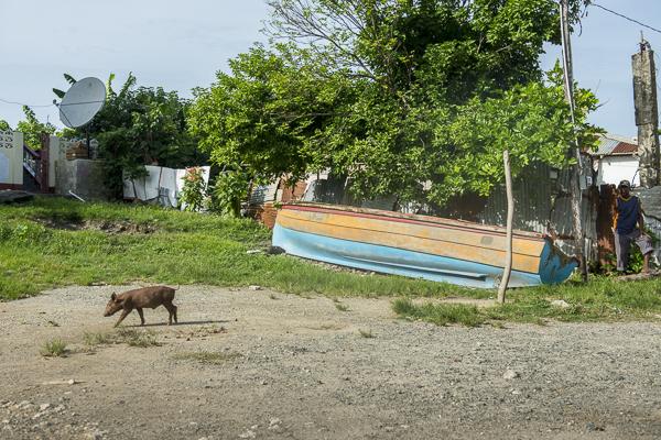 jamaica-7606
