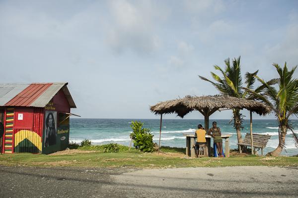 northeast jamaica