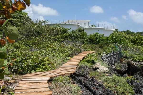 jamaica-7679