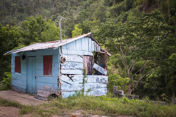 jamaica-7864 copy
