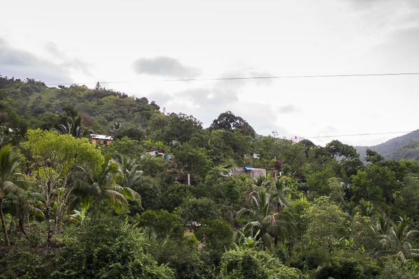 jamaica-7875 copy